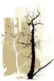 Silhouetten van bomen en vliegende vogels op een grungeachtergrond Stock Afbeelding