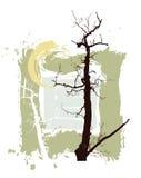 Silhouetten van bomen op een grungeachtergrond Stock Afbeelding
