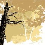 Silhouetten van bomen op een grungeachtergrond Royalty-vrije Stock Foto