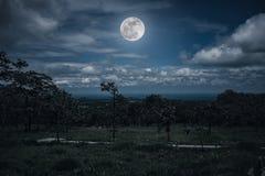 Silhouetten van bomen tegen nachthemel met wolken en heldere fu Stock Foto's
