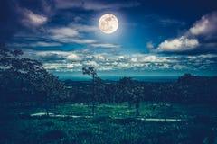 Silhouetten van bomen tegen nachthemel met wolken en heldere fu Stock Foto