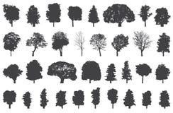 Silhouetten van bomen vectorreeks Stock Fotografie