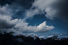 Silhouetten van boom en nachthemel met wolken outdoors Royalty-vrije Stock Afbeeldingen