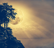 Silhouetten van boom tegen hemel over rustige overzees Royalty-vrije Stock Foto's
