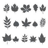 Silhouetten van boombladeren Autumn Leaf Collection Stock Afbeelding