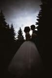 Silhouetten van bruid en bruidegom het kussen op de achtergrondaard Stock Fotografie