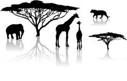 Silhouetten van dieren Royalty-vrije Stock Foto