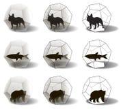 Silhouetten van dieren in dodecahedra Royalty-vrije Stock Afbeeldingen