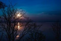 Silhouetten van droge boom tegen hemel en wolk over rustige overzees Stock Fotografie