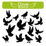 Silhouetten van duiven Royalty-vrije Stock Afbeelding