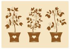 Silhouetten van gestileerde bloemen in potten Stock Foto
