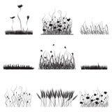 Silhouetten van gras, bloemen   Stock Foto's