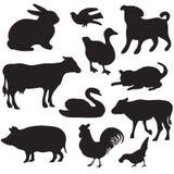 Silhouetten van hand getrokken landbouwbedrijfdieren. Hond, kat, eend, konijn, koe, varken, haan, kip, zwaan, puppy, katje. Royalty-vrije Stock Afbeeldingen