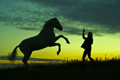 Silhouetten van het paard en de vrouw op een achtergrond van groene hemel in de avond Royalty-vrije Stock Afbeeldingen