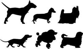 Silhouetten van honden Stock Foto's