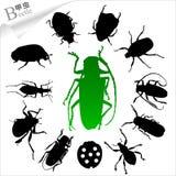 Silhouetten van insecten - kever Stock Afbeelding