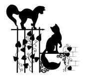 Silhouetten van katten Stock Fotografie