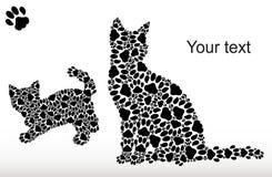 Silhouetten van katten van kattensporen Stock Foto