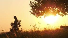 Silhouetten van meisje het lopen in de weide met haar hond tijdens verbazende zonsondergang stock videobeelden