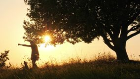 Silhouetten van meisje opleiding en het spelen met haar leuke hond tijdens verbazende zonsondergang stock footage
