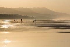 Silhouetten van mensen die op het strand lopen Stock Fotografie