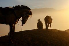 Silhouetten van mensen en de paarden Stock Afbeeldingen