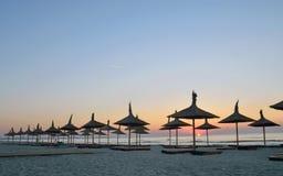 Silhouetten van parasols royalty-vrije stock foto