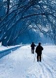 Silhouetten van skiërs in een sneeuwval Stock Foto