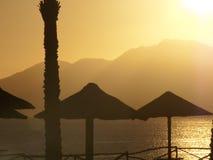 Silhouetten van strandparaplu's Stock Foto