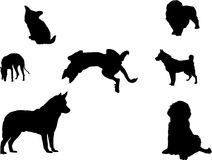 Silhouetten van verscheidene honden Stock Afbeeldingen