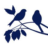 Silhouetten van vogels bij tre Royalty-vrije Stock Afbeeldingen