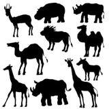 Silhouetten van wilde dieren Stock Foto