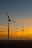 Silhouetten van windturbines bij dageraad dichtbij Hopefield Stock Foto's
