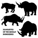 Silhouetten van wollige rinoceros Stock Afbeelding