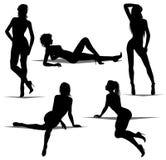 silhouettes женщина Стоковые Фотографии RF