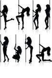 silhouettes стриппер Стоковые Изображения