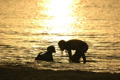 Silhouettes. Man and dog in the sea at sunset Stock Images