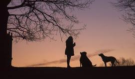 silhouettes Photo libre de droits