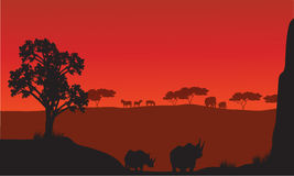 Silhouettes of african with rhino animals Stock Image