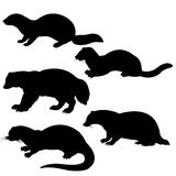 Silhouettes animal Stock Images