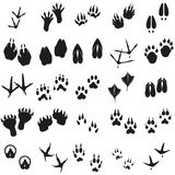 Silhouettes animal birds and mammals footprints set Vector icons. Stock Photo
