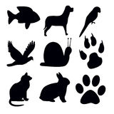 Silhouettes animal on white background Royalty Free Stock Images