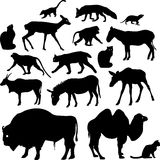 Silhouettes of animals. Silhouettes of different animals. Silhouettes of birds of prey and herbivores. Silhouettes of domestic and wild animals Royalty Free Stock Photography