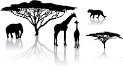 Silhouettes of animals. From safari / zoo Royalty Free Stock Photo