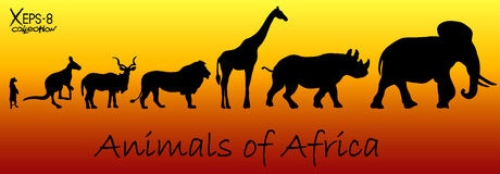 Silhouettes of animals of Africa: meerkat, kangaroo, kudu antelope, lion, giraffe, rhino, elephant Stock Photo