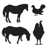 Silhouettes of animals and birds vector Stock Images
