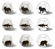 Silhouettes of animals in dodecahedra Royalty Free Stock Images