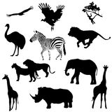 Silhouettes of animals savanna. Black silhouettes of animals savanna on a white background, illustration royalty free illustration