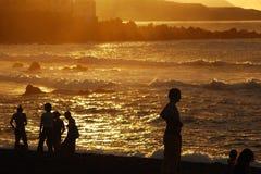 Silhouettes au coucher du soleil images stock