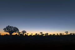 Silhouettes au coucher du soleil des arbres de tremblement et roches chez Garas Photographie stock